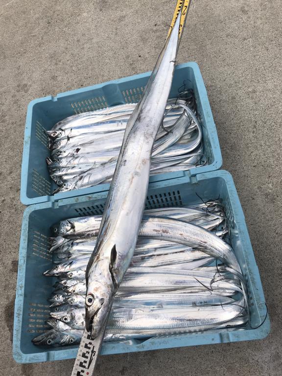 9月12日(土)の釣果(タチウオ134cm含む船中80匹)